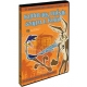 Super hvězdy Looney Tunes: Kohoutek Uličník / Vilda E. Kojot (DVD)