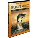Zachraňte Willyho 1 (DVD) - ! SLEVY a u nás i za registraci !