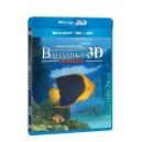 Bahamské dobrodružství 2D + 3D