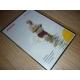 Pupendo - Edice Blesk (DVD) (Bazar)