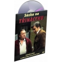Sázka na třináctku (DVD)