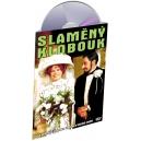 Slaměný klobouk (DVD) - ! SLEVY a u nás i za registraci !