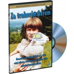 https://www.filmgigant.cz/15665-18421-thickbox/za-trnkovym-kerem-dvd.jpg
