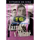 Zázrak v Miláně (Vittorio De Sica) (DVD)