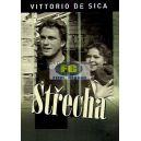 Střecha (Vittorio De Sica) (DVD)