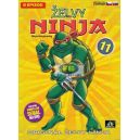 Želvy ninja - 1. série - disk 11 (5 epizod) (DVD)