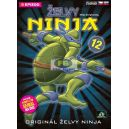 Želvy ninja - 1. série - disk 12 (5 epizod) (DVD)