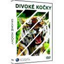Divoké kočky - Edice Fascinující planeta (BBC dokumenty) (DVD7 z 10) (DVD)