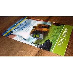https://www.filmgigant.cz/27830-34257-thickbox/svetobeznik-11-v-kalhotach-a-sukni-edice-svetovy-dokument-dvd11-z-12-dvd-bazar.jpg
