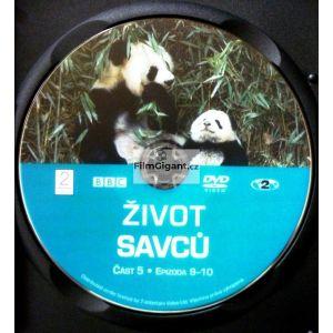 https://www.filmgigant.cz/30502-39719-thickbox/zivot-savcu-pribeh-o-preziti-5-edice-mf-dnes-dvd5-z-5-dvd-bazar.jpg