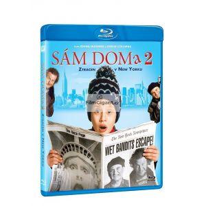 https://www.filmgigant.cz/30546-39808-thickbox/sam-doma-2-ztracen-v-new-yorku-bluray.jpg