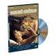 Dobré světlo (DVD)